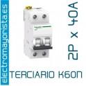 Magnetotérmico 2P 40 A (Terciario) SCHNEIDER K60N